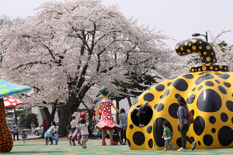 2014年春の十和田市官庁街通07