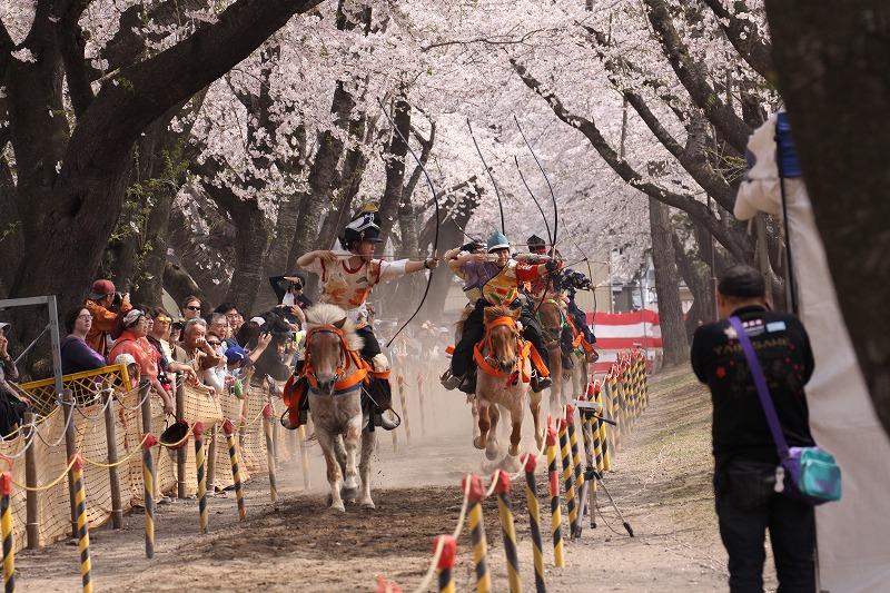 2014年春の十和田市官庁街通12
