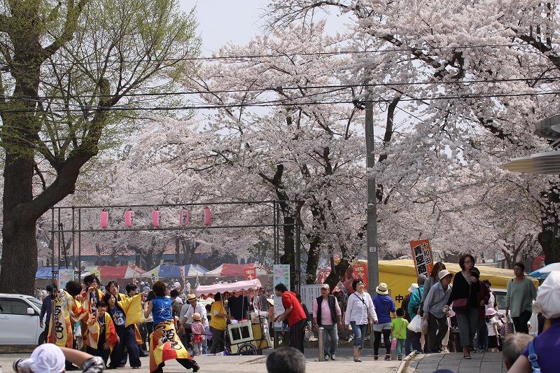 2014年春の十和田市官庁街通04